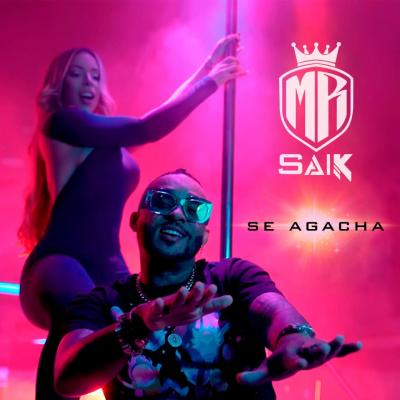 Mr Saik - Se Agacha