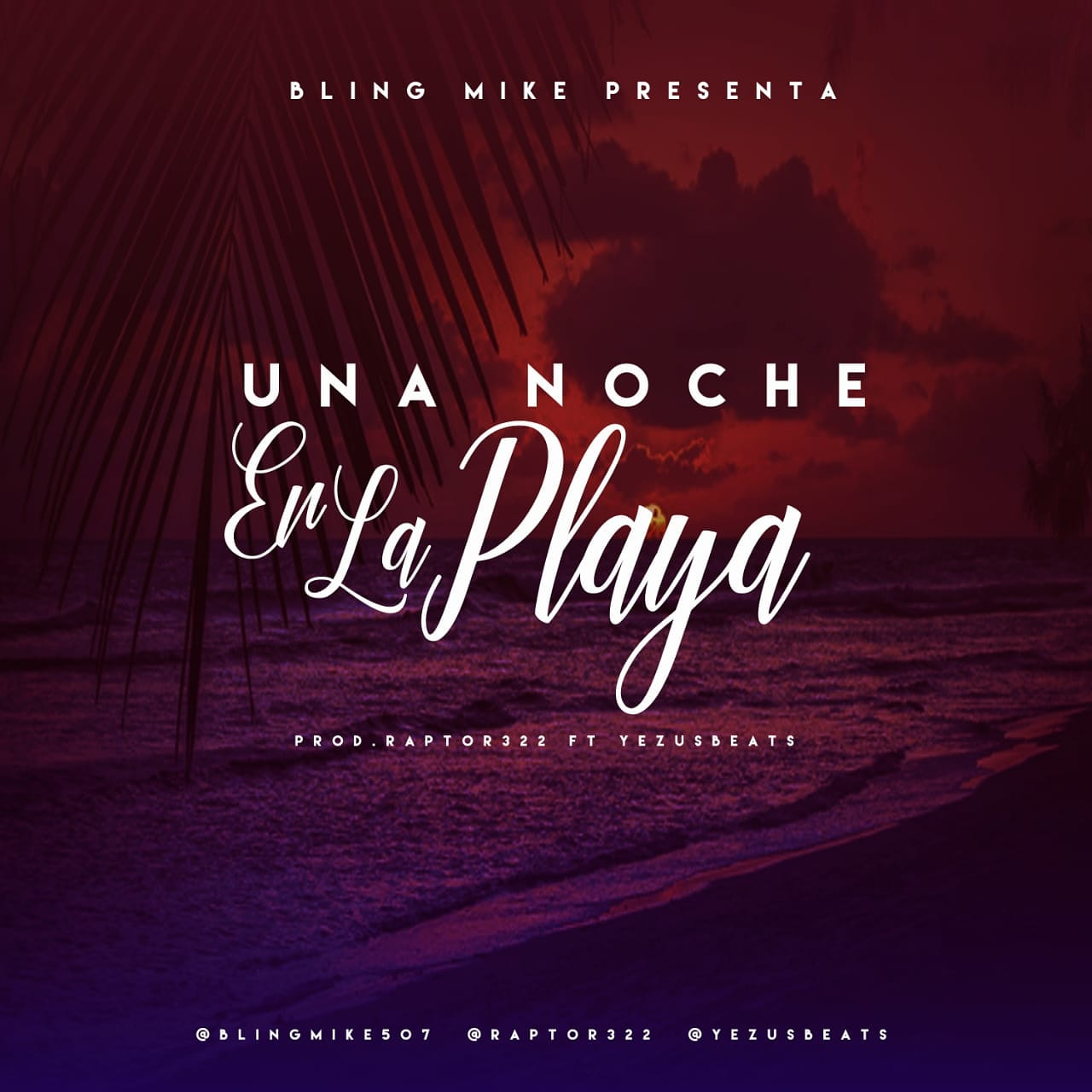 Bling Mike - Una Noche En La Playa